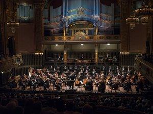 Zenekari szervezőt keres a Concerto Budapest